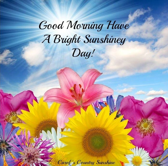 Good Morning 3d Images With Quotes 18 Good Morning In Jesus 697x689 Wallpaper Teahub Io