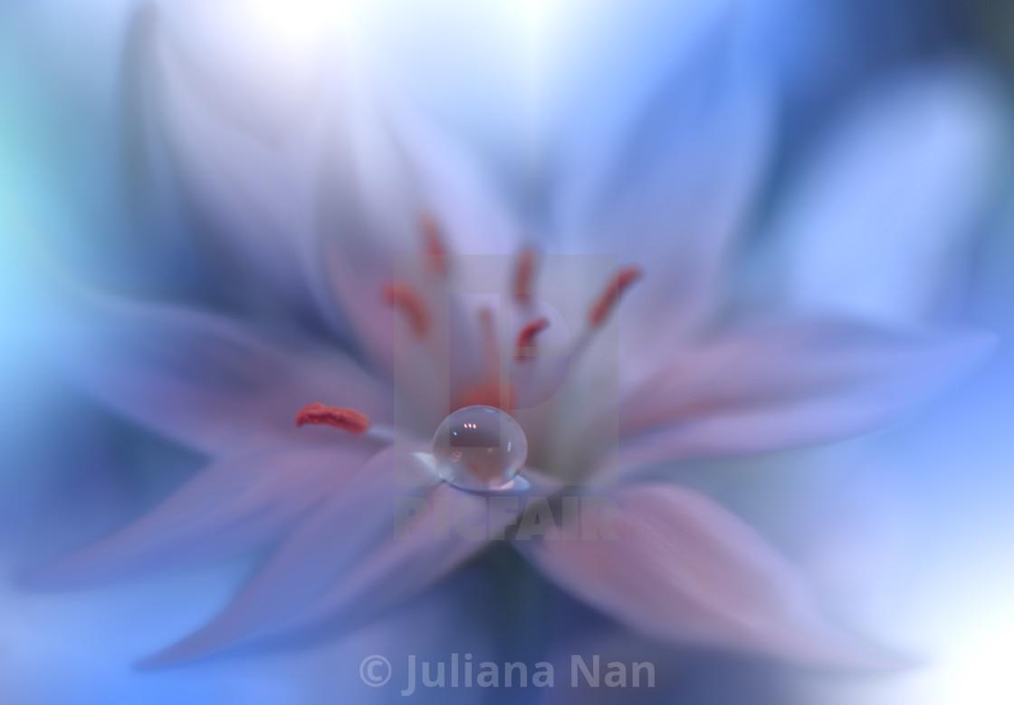 Beautiful Nature Background Photography 1120x778 Wallpaper Teahub Io