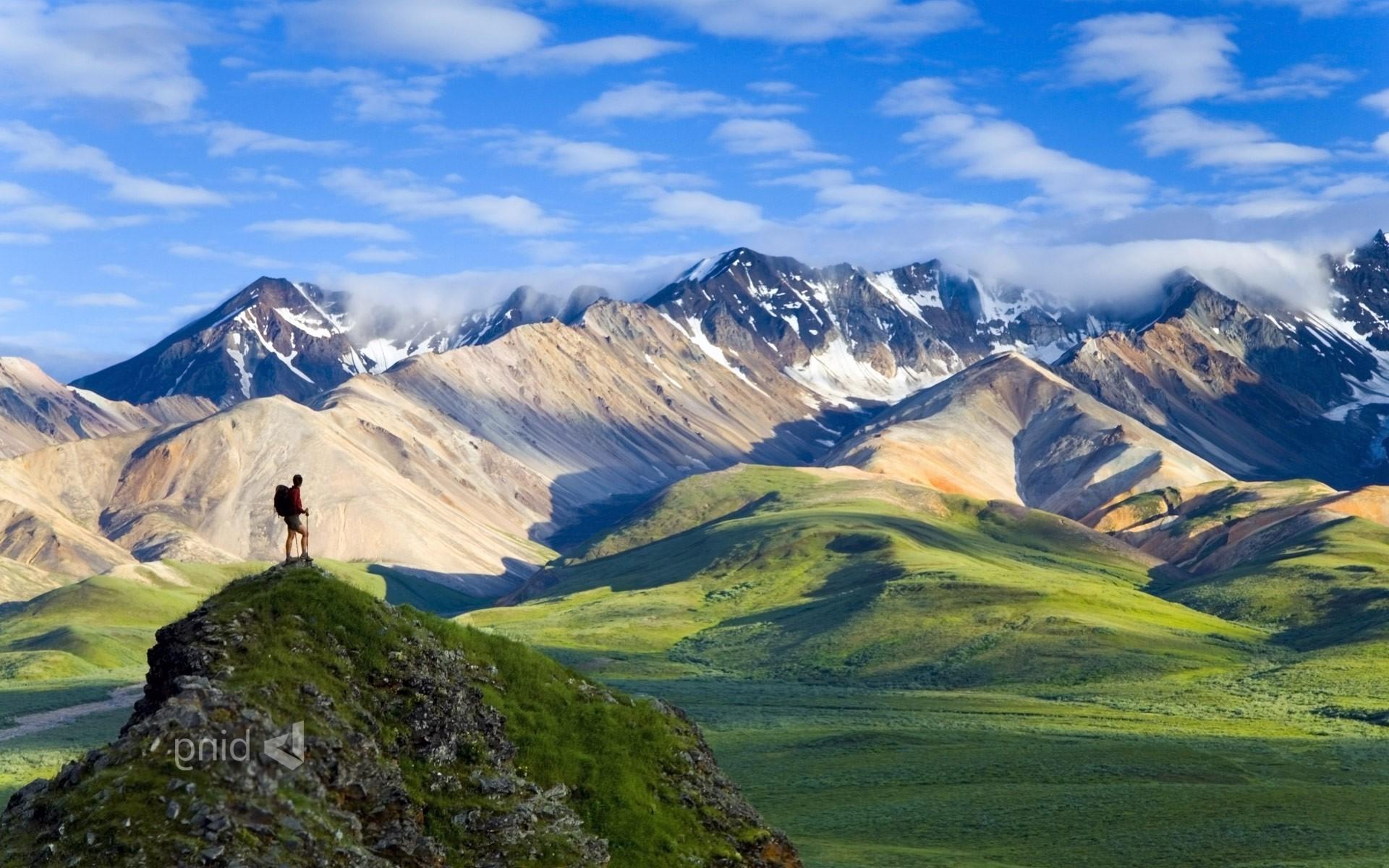 Nature, Landscape, Mountain, Hiking, National Park, - Denali National Park Nature - HD Wallpaper