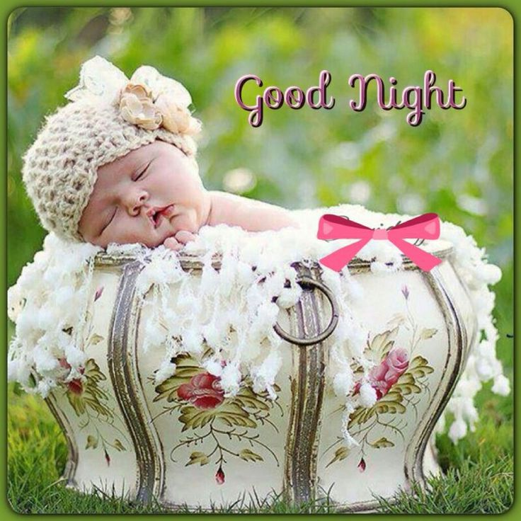 Good Night Hd Images Pictures - Beautiful Good Night Cute - HD Wallpaper