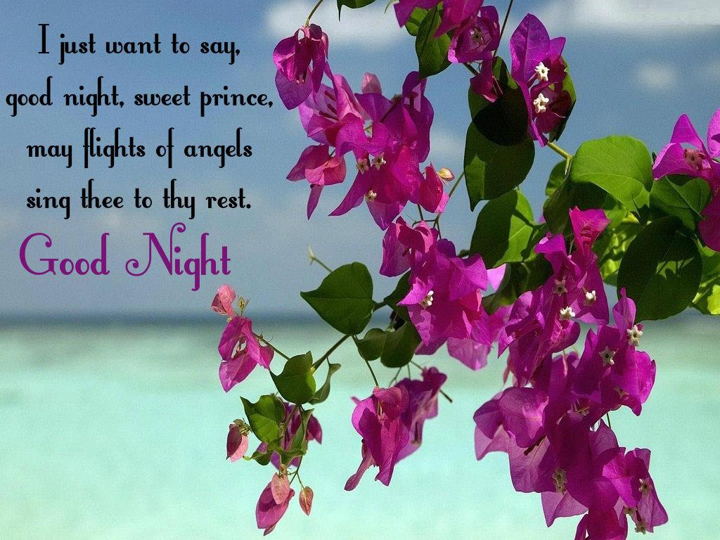 Latest Good Night Image Download - Summer Flowers Wallpaper For Desktop - HD Wallpaper