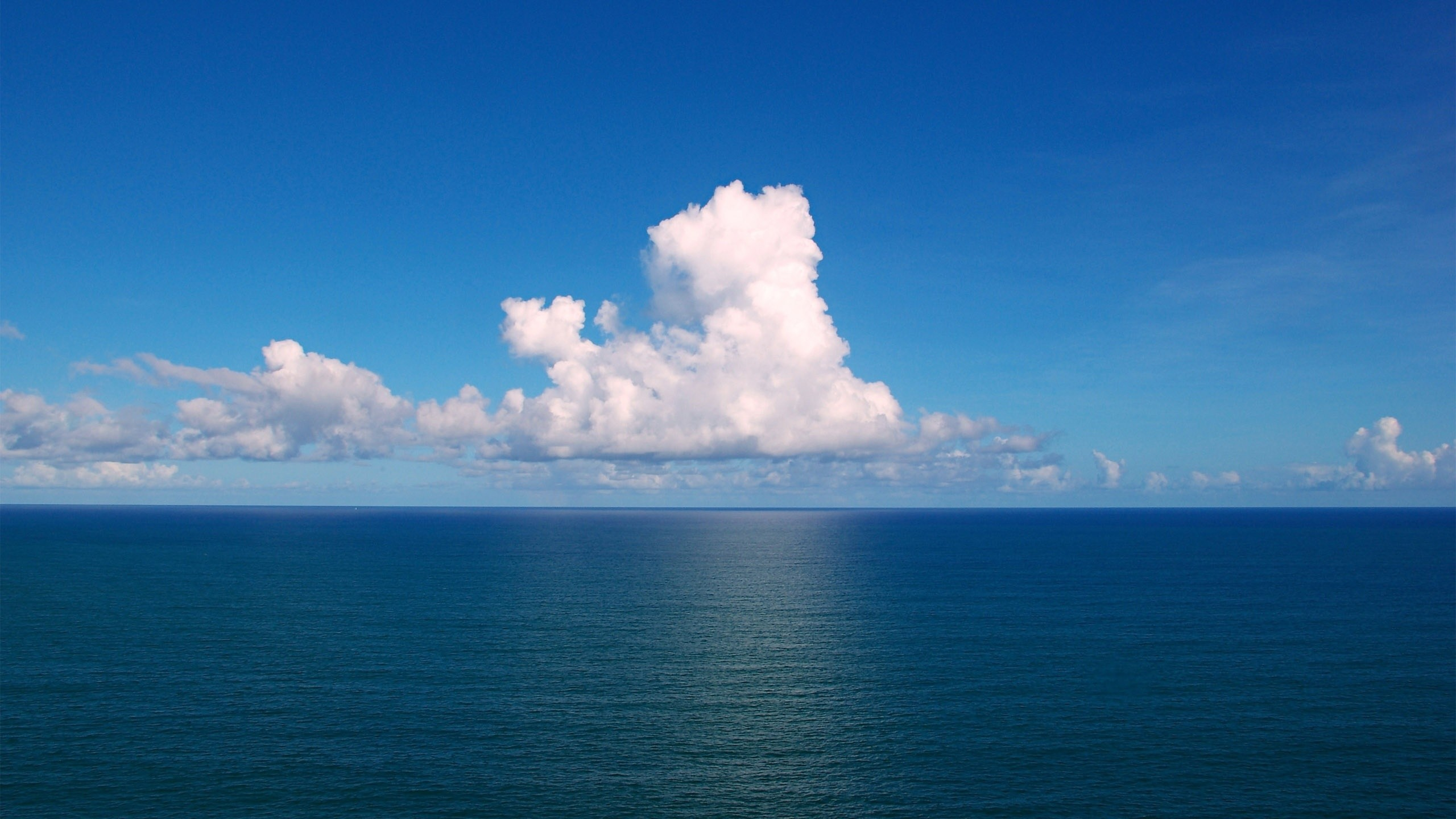Ocean Wallpapers Hd Free Desktop Desktop Wallpapers Windows 10desktop Background Hd 2560x1440 Wallpaper Teahub Io