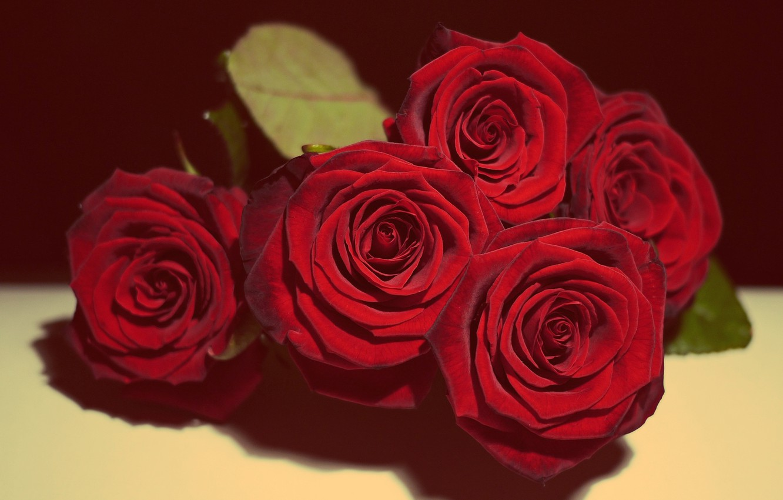 Photo Wallpaper Love, Beautiful, Flowers, Roses, Vintage, - Love Romantic Love Beautiful Rose - HD Wallpaper