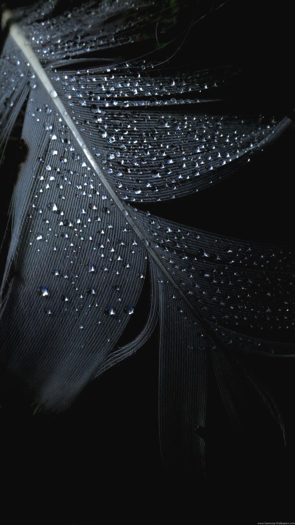 Iphone 6 Plus Wallpaper Dark Black Wallpaper Hd Download 1026x1824 Wallpaper Teahub Io