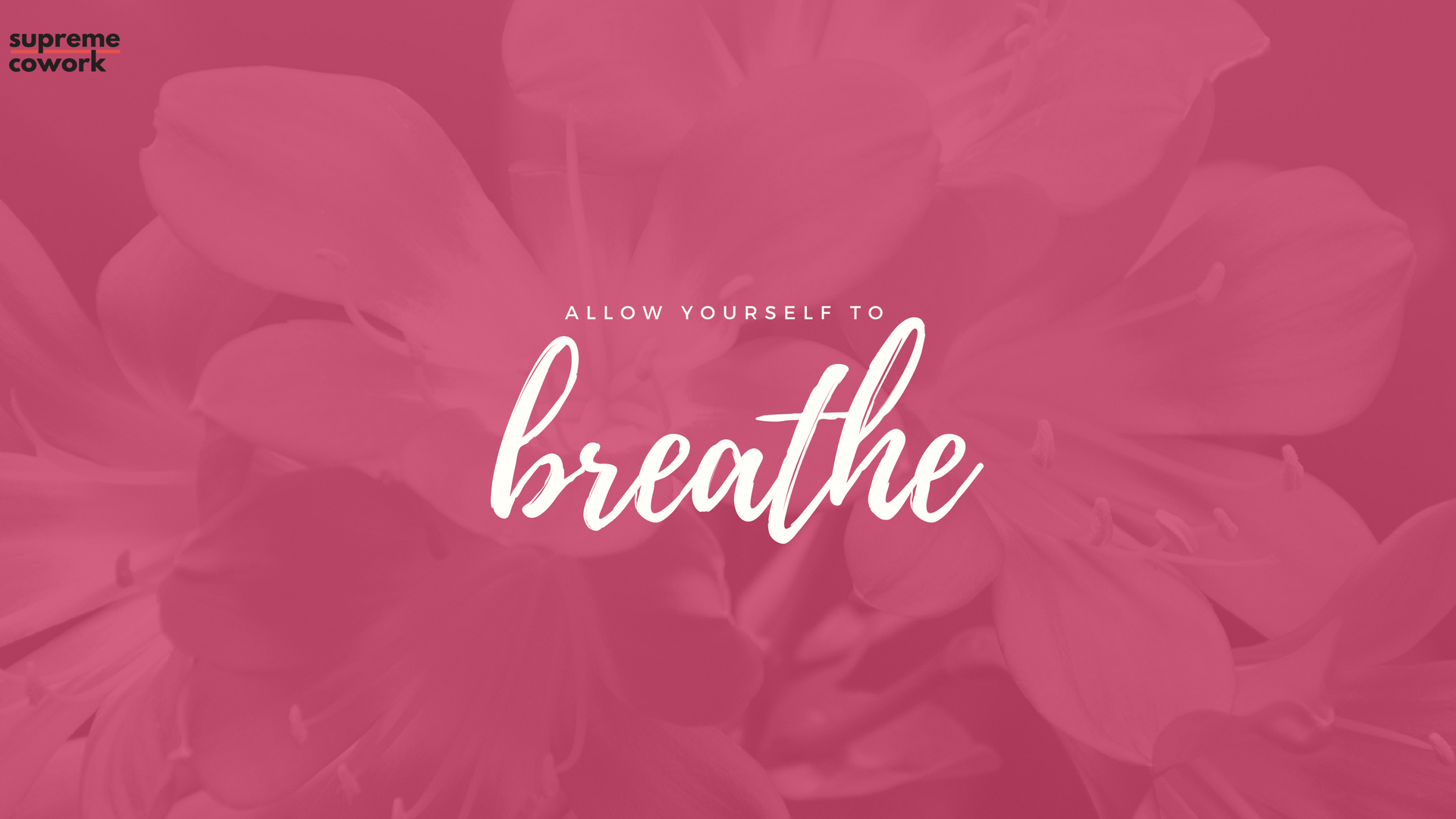 Free Inspirational Wallpapers Download Free Motivational Calligraphy 1920x1080 Wallpaper Teahub Io