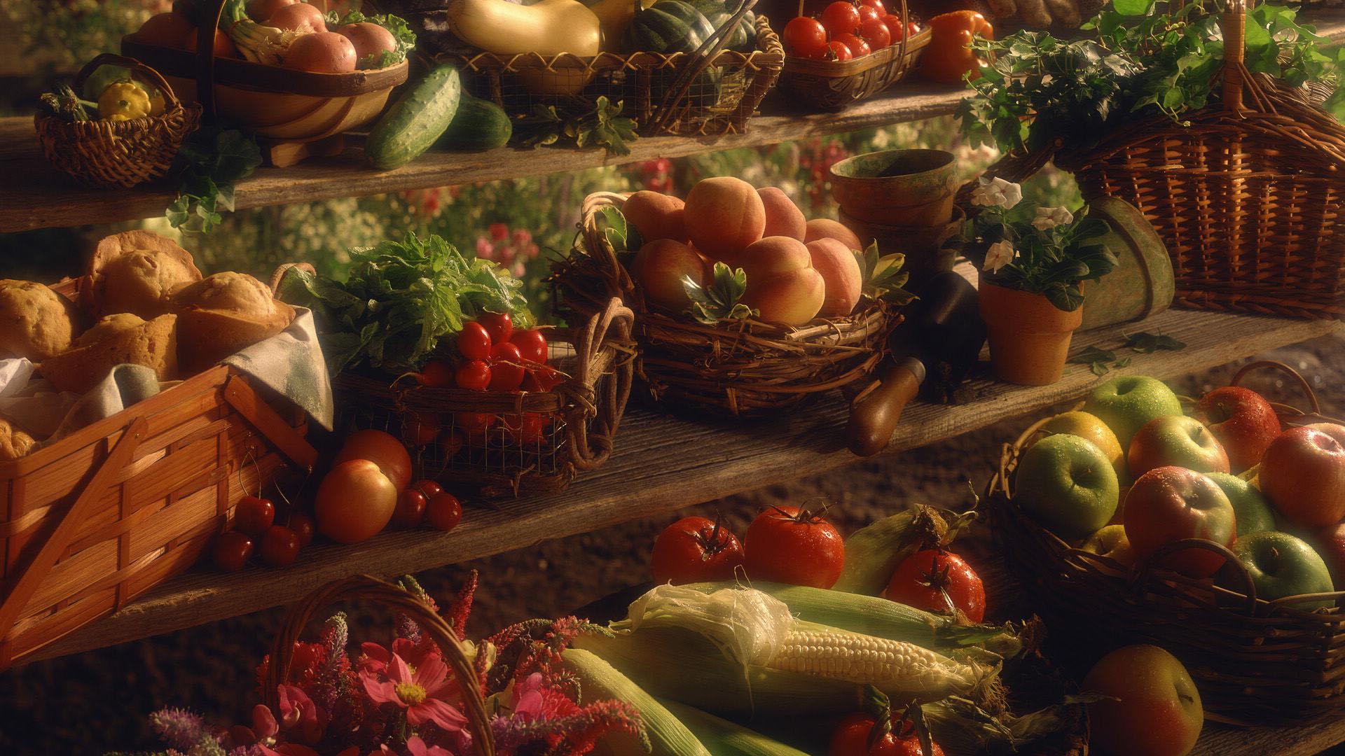 Thanksgiving Wallpaper Desktop 1080 - HD Wallpaper