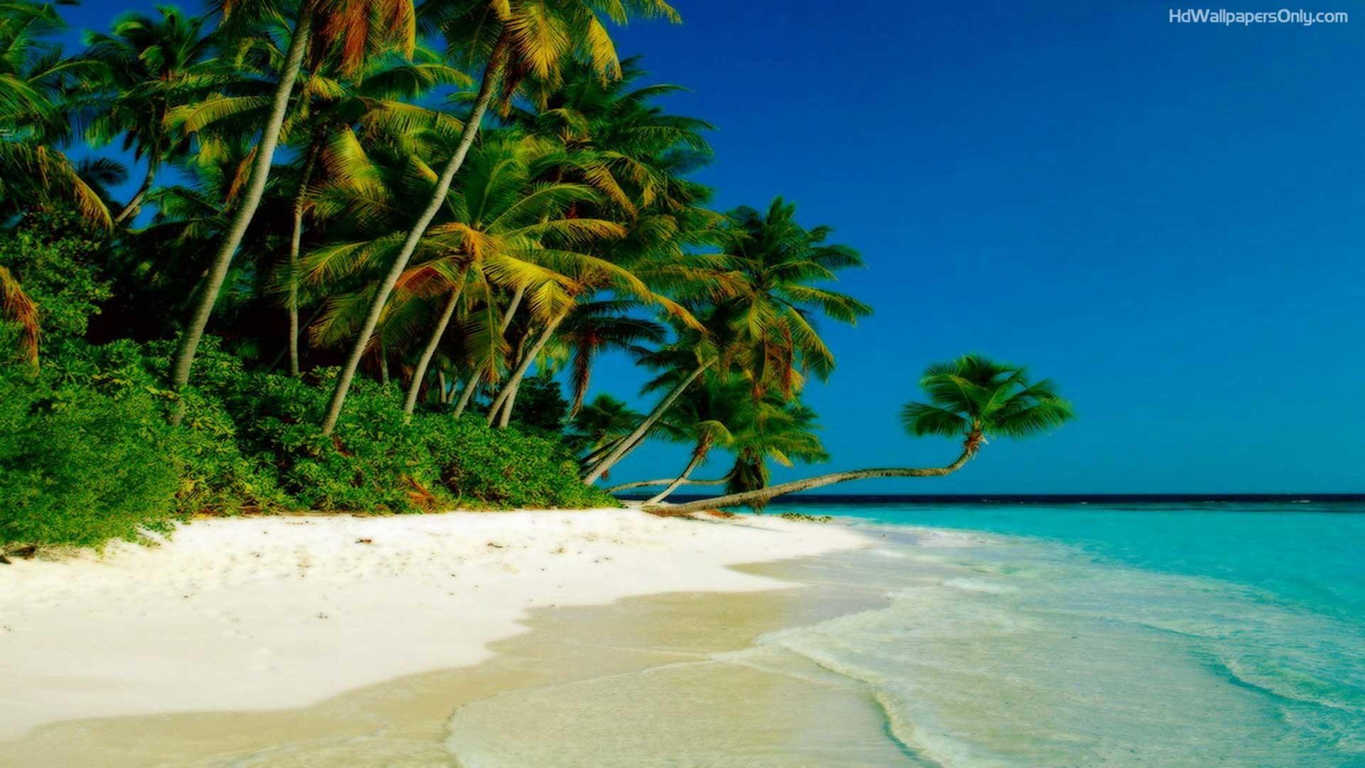 Beaches Islands Hd Wallpapers Beach Desktop Backgrounds,stock - Tropical Island Background - HD Wallpaper