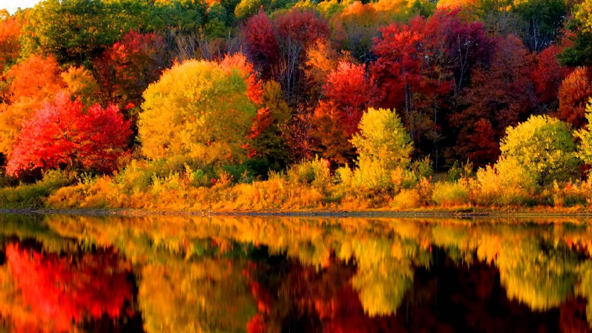 Fall Foliage 2017 New England - HD Wallpaper