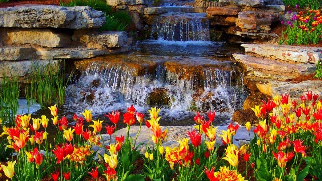 Hd Nature Wallpapers Desktop Images Download Cool Beautiful - Nature Full Hd Beautiful - HD Wallpaper