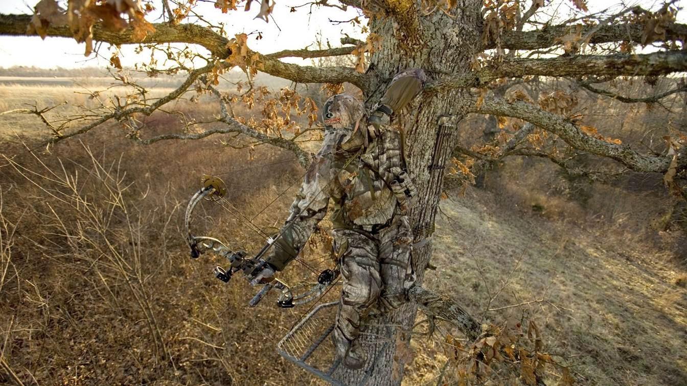 Mossy Oak Wallpaper - Mossy Oak - HD Wallpaper