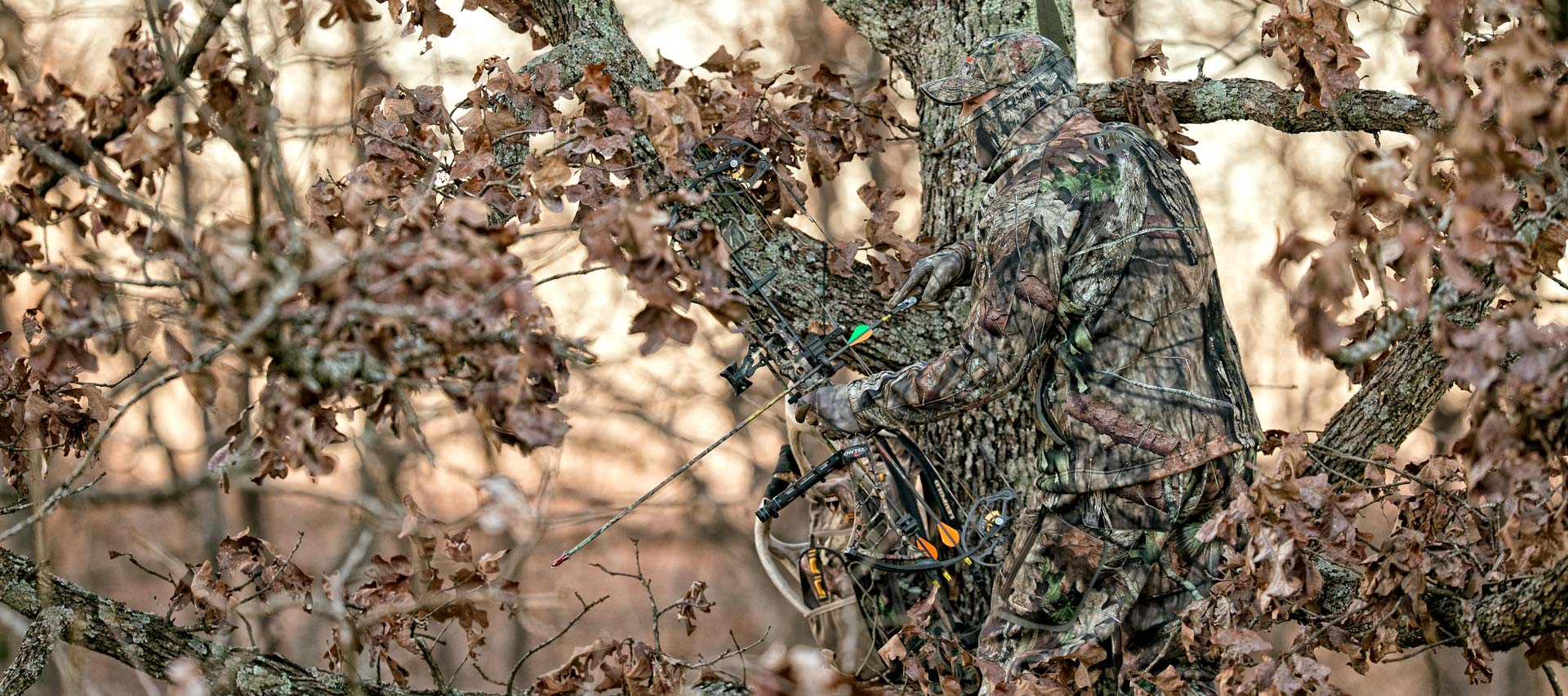 Mossy Oak Break-up Country Lifestyle Photo - Tree - HD Wallpaper