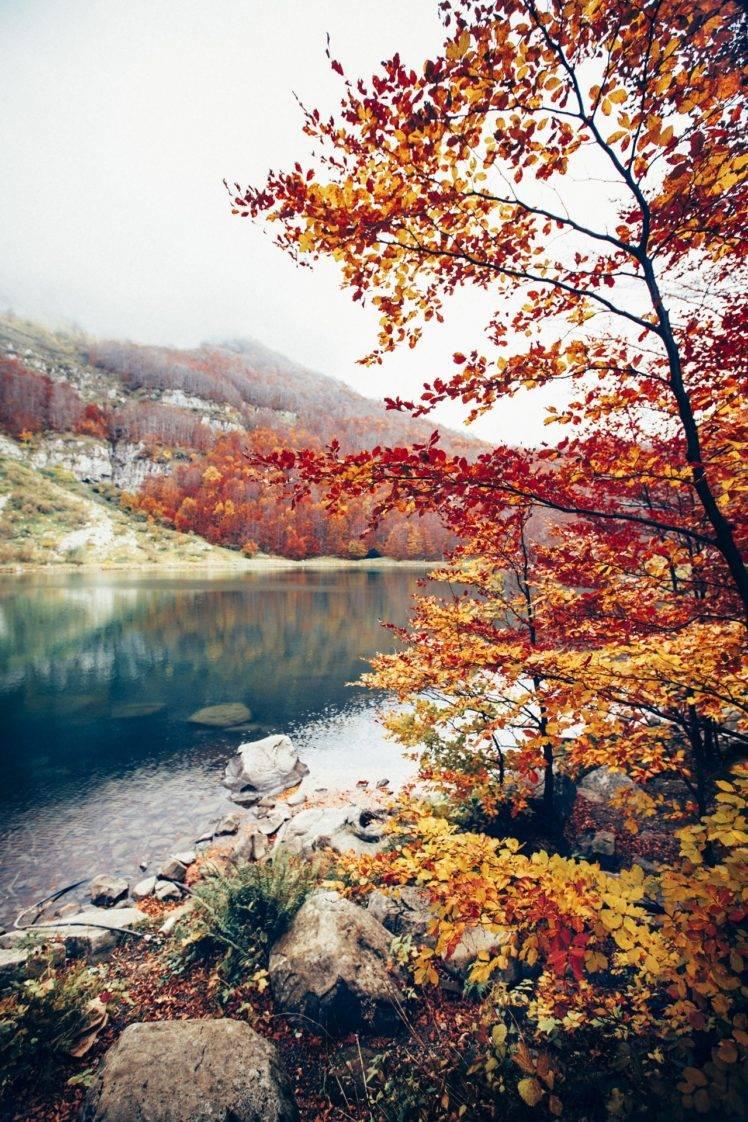 Autumn Aesthetic Color Palette - HD Wallpaper