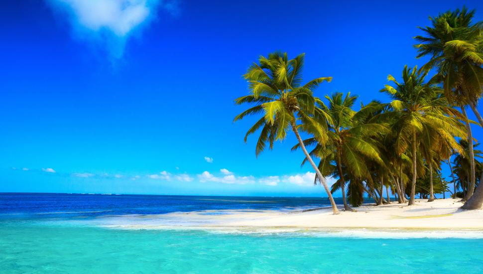 Sea, Beach, Coast, Cloud, Palm, Blue, Summer, Emerald, - Palm Beach - HD Wallpaper
