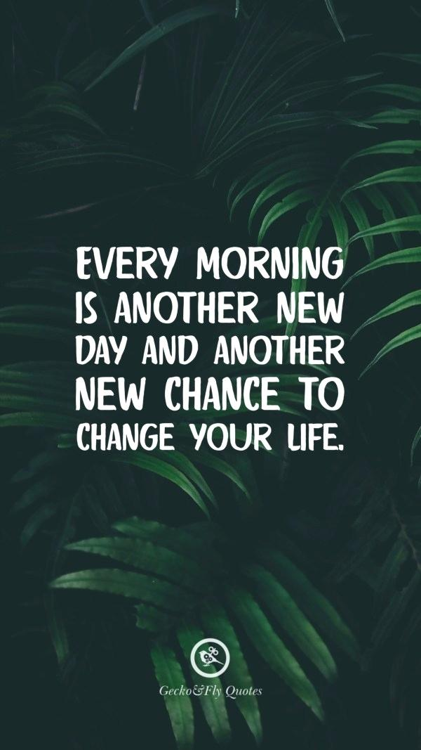 Attitude Quotes In Hd Every Morning Is Another New - Attalea Speciosa - HD Wallpaper