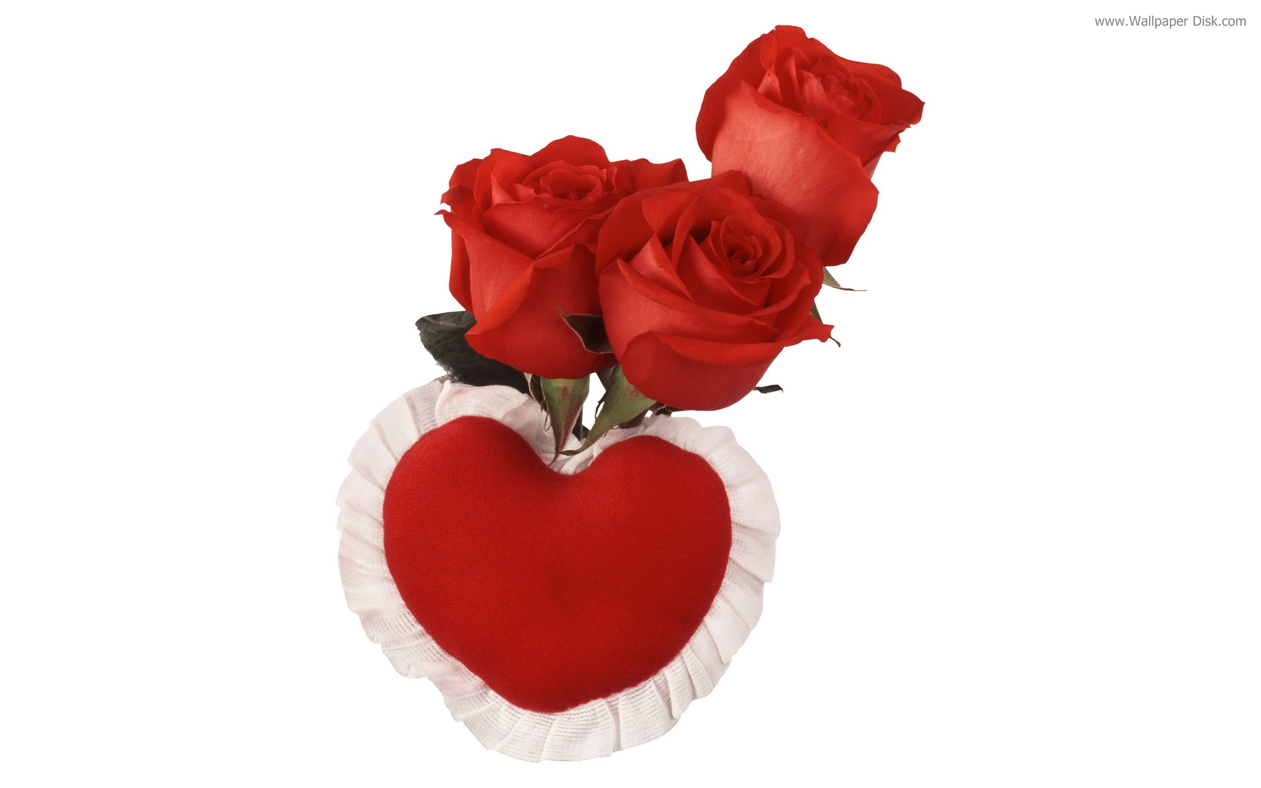 Red Rose Live Wallpaper Android Apps On Google Play - Beautiful Rose For Rose Day - HD Wallpaper