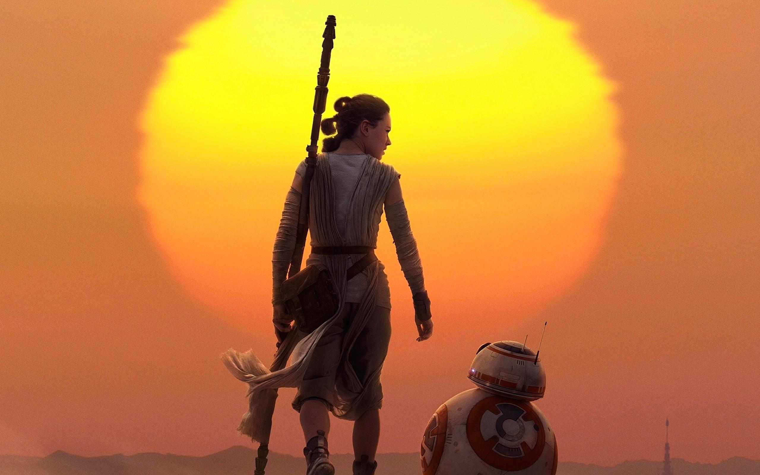 Star Wars Rey And Bb8 2560x1600 Wallpaper Teahub Io