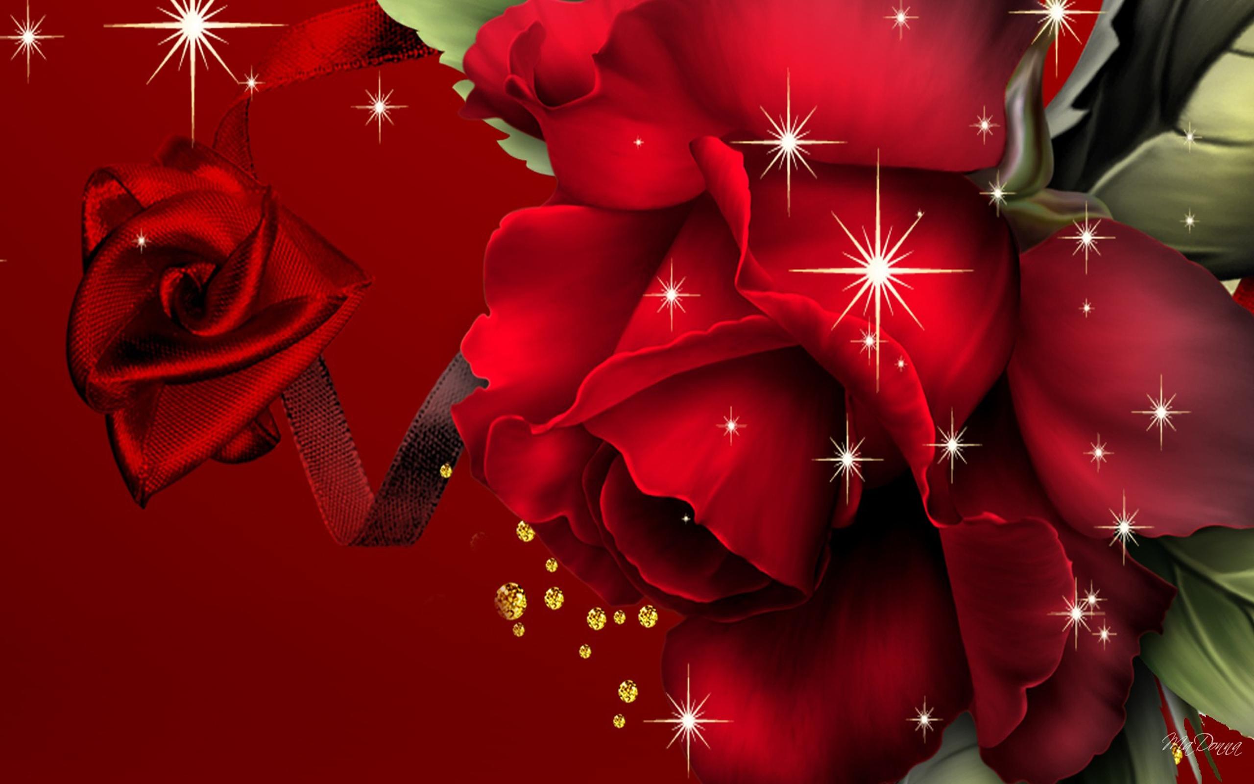 Background Red Rose Wallpaper Hd 2560x1600 Wallpaper Teahub Io