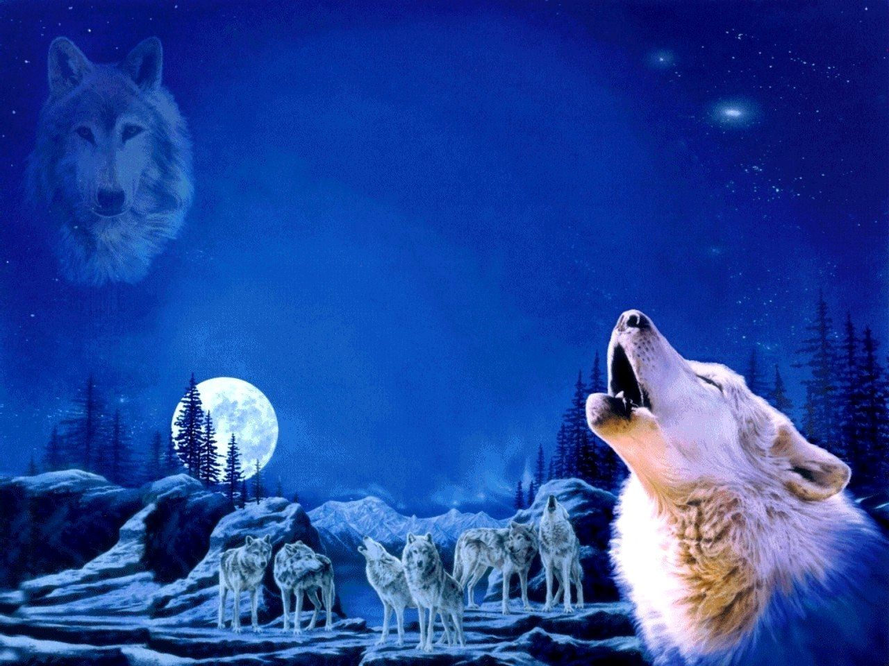 Anime Wolf Pack Wallpapers Hd Resolution For Laptop Wolf Pack Howling At The Moon 1280x960 Wallpaper Teahub Io