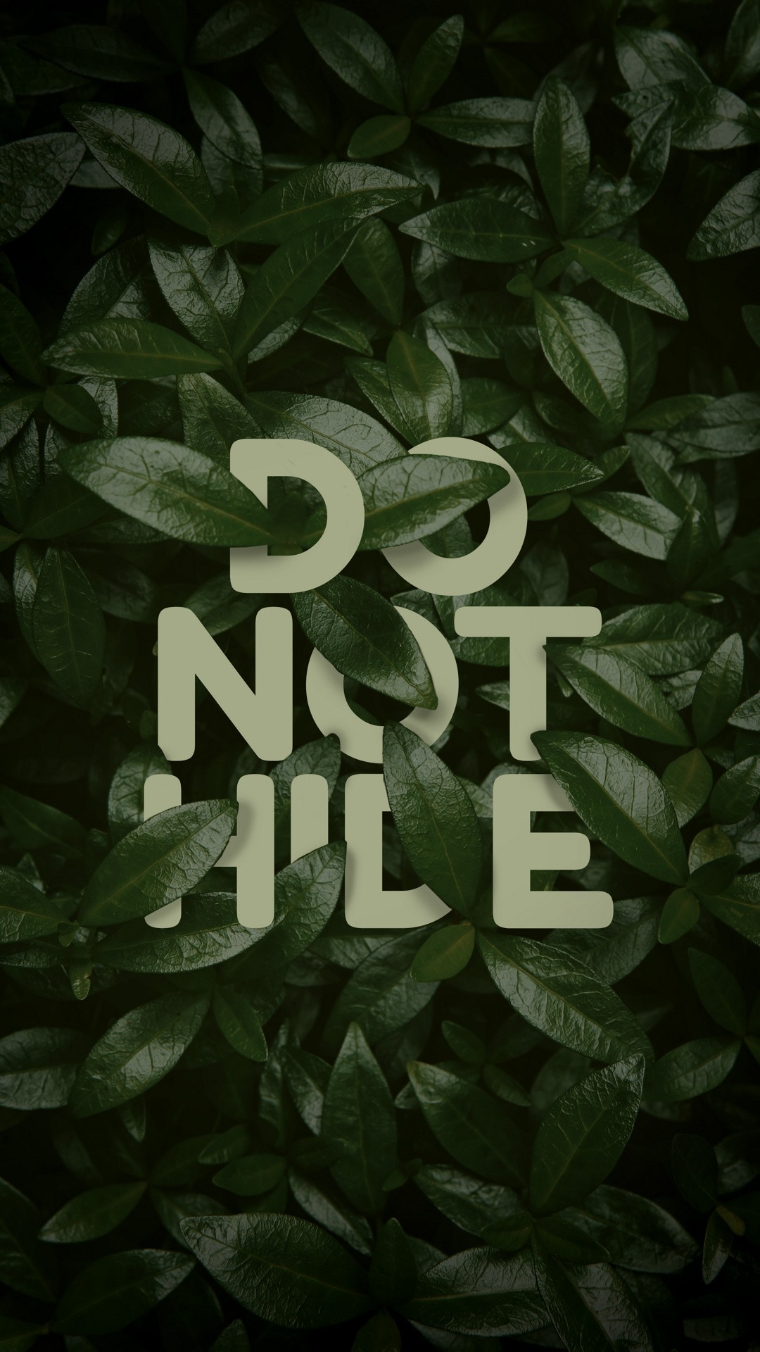 Do Not Hide Wallpaper Samsung J4 Core 1080x1920 Wallpaper Teahub Io