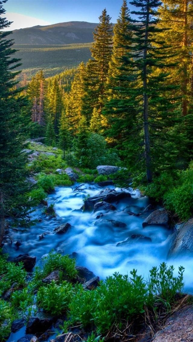 78 Images About Nature Wallpaper On Pinterest - Best Nature Wallpapers For Mobile Phone - HD Wallpaper
